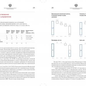 Дизайн инфографики для официального доклада
