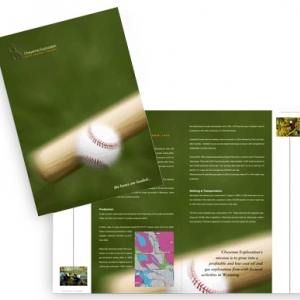 Полноцветный годовой отчет