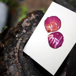 Открытки с лепестками роз ручной работы