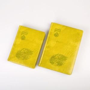 Стильные ярко-желтые ежедневники