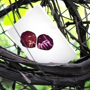 Дизайнерские открытки с лепестками роз