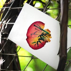 Корпоративные открытки с лепестками роз