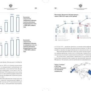 Аналитическая инфографика для официального доклада