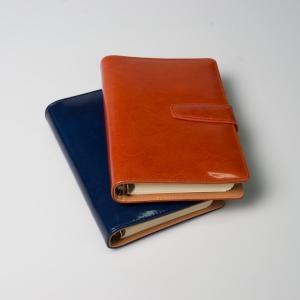Миниатюрный ежедневник из глянцевой кожи