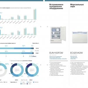 Бизнес-инфографика для презентации компании