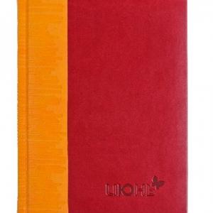 Яркий двухцветный ежедневник из эко-кожи