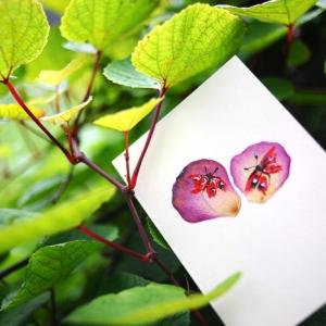 Дизайнерская открытка с лепестками роз