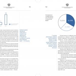 Аналитическая инфографика для официальных докладов
