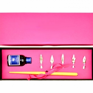 Металлическая перьевая ручка с набором перьев и чернилами
