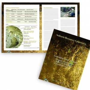 Комплексная разработка годовых отчетов